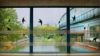 shoolya userpic