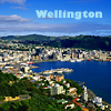 Kate: Wellington