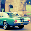 c.: Mustang Ellie