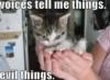 evilthings