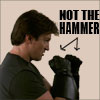 Not the Hammer