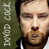 DOVOD COCK