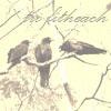crows, fitheach