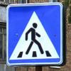 pnetmon: пешеход