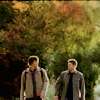 spn; the winchesters (soft)
