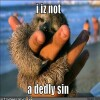 sloth-not dedly sin