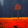 within_without_ userpic