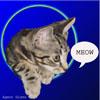 agent_gizmo userpic