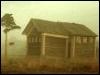 дом у сосны