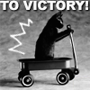 Stephanie: victory cat