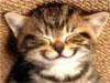 annachristina userpic
