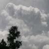 Clouds-Woods Lake