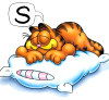 garfield sleep