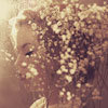 vinilla_sky userpic