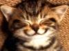 robyn: smile