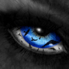 swii userpic