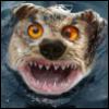 rumkot userpic
