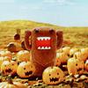 Domokun pumpkins