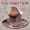 teastainedbird