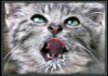 mynameisnatali userpic
