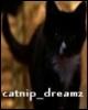 catnip_dreamz userpic