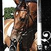gatehorse userpic