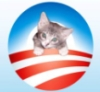 Kitties for Obama