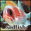 Geoviki: animals - sadfish