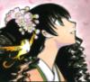 Shu: Himawari in rosa