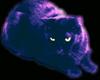 Stax: smallcat