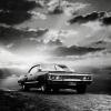 Hollowtear: impala