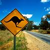 kangaroo_eve userpic