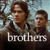 Smidee: spn_brothers