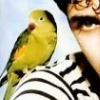 farfromcorsica userpic