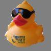 damiss userpic
