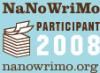 NaNo2008