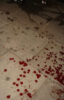 bloodsuker userpic