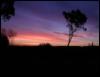 Eeeeearly sunrise