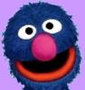 Muppet: grover plain - dragonwyn
