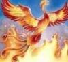 феникс возрождение