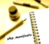 Ship_manifiesto