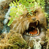 angry fizzgig
