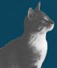 kittyroara userpic
