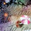 EMIRY: walking in the rain~