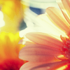 Persephone [userpic]
