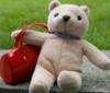 bearny userpic