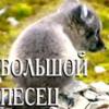 pesec_sm