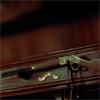 SotD Winchester gun