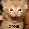KayRey: Kitten_OMG