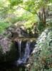 ka_pell: Японский сад